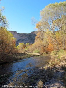 Arivaipa Creek looking toward the canyon