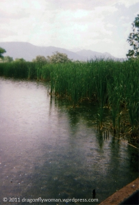 pond at Fountain Creek Park
