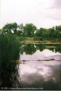 pond at Fountain Creek Park