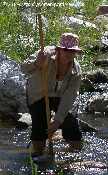 Me sampling in Sabino Canyon