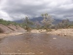 The Catalina Mountains as a storm rolls in