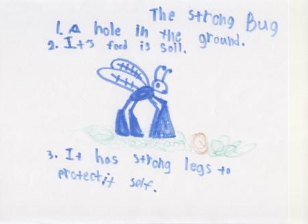 Strong Bug