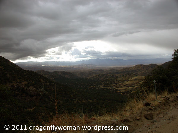 looking toward Nogales