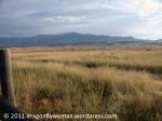 Los Fresnos grasslands