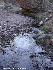 Harshaw Creek