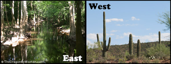water in East vs West