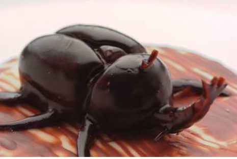 Beetle cake