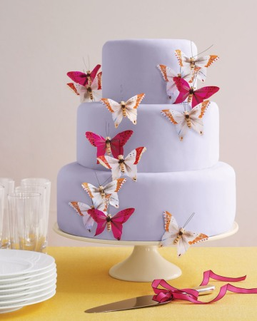Martha's new butterfly cake