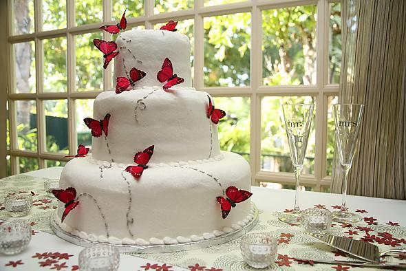 Martha inspired butterfly cake