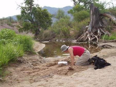 Me burying sampler