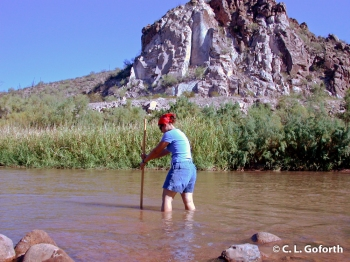 Me Sampling the Salt River