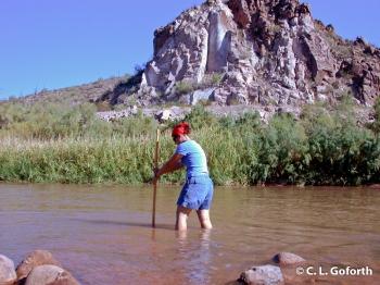 Me Sampling the Salt River