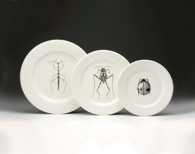 insect dinnerware