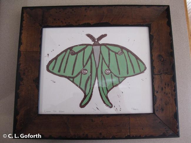 Luna moth print